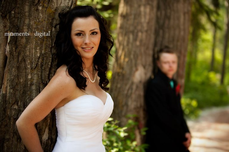 This forest in Spruce Grove made a great location for wedding photographs