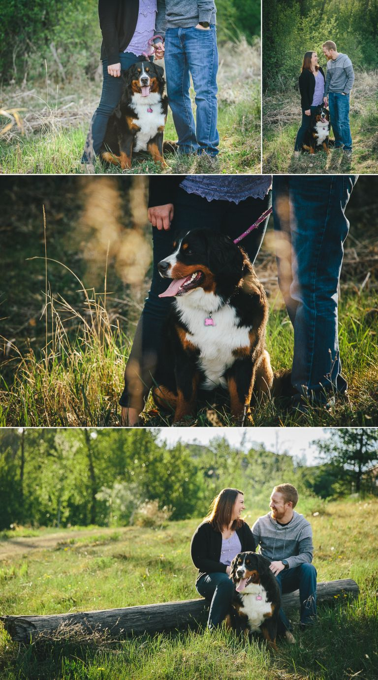 Engagement Photography in Edmonton's River Valley 1