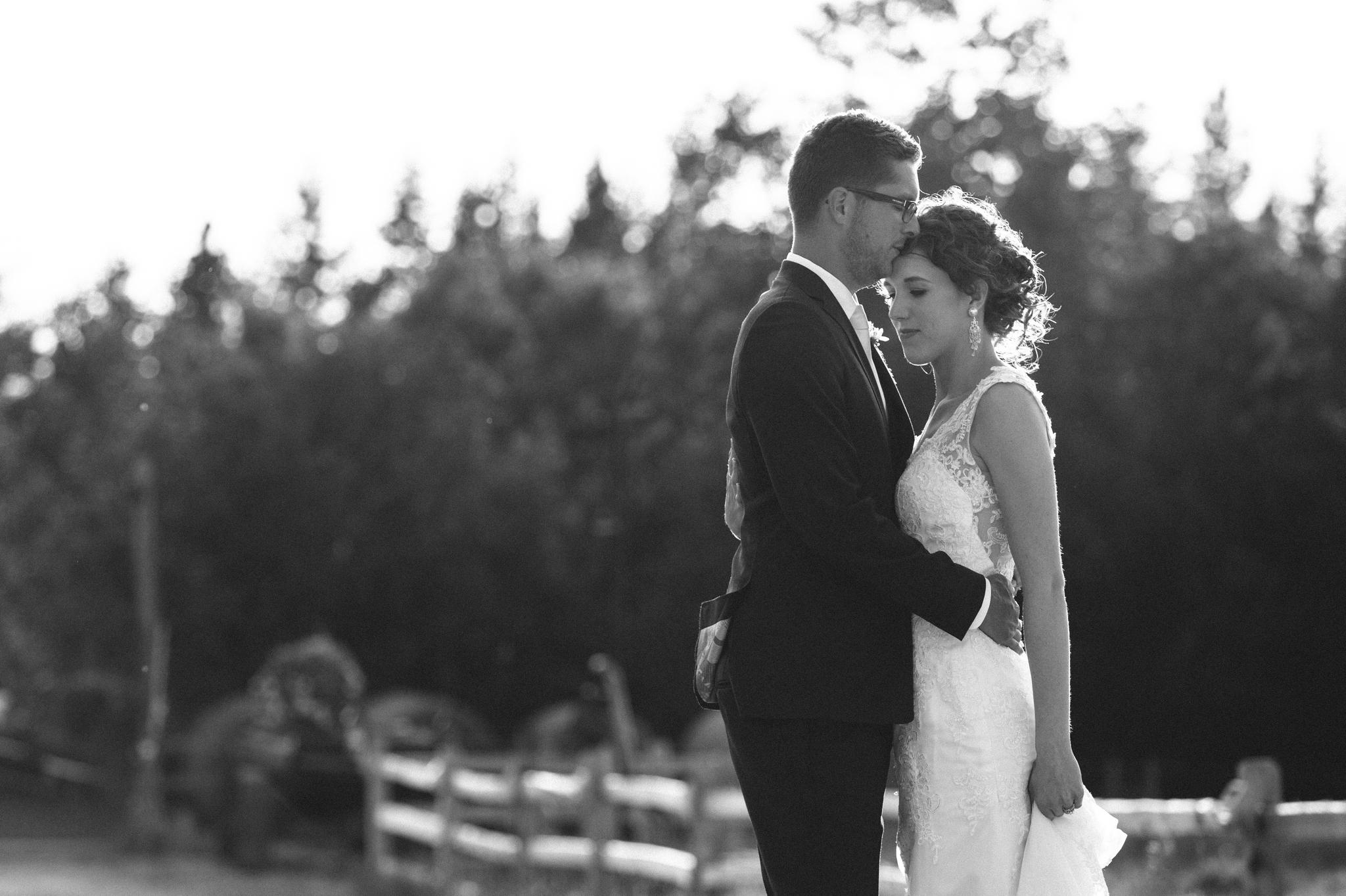Michelle & Scott's Rustic Wedding at Lions Garden