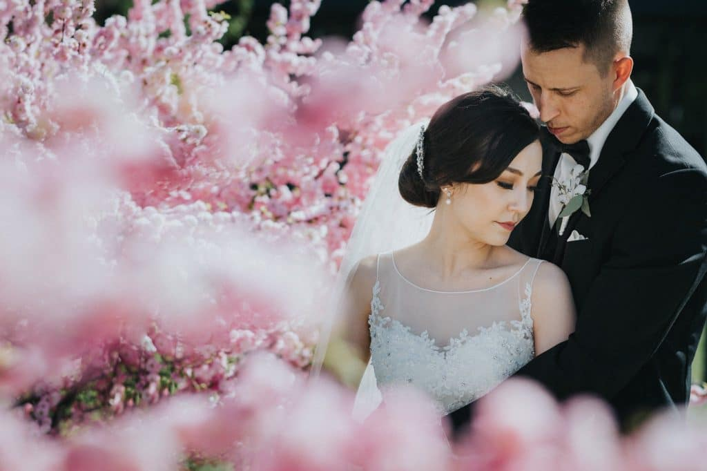 Wedding photos in the blossoms in Edmonton